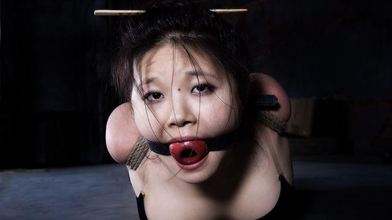 erotische sexfilme sklavin geschichten
